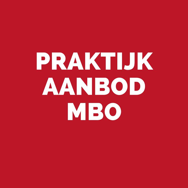 praktijk aanbod MBO