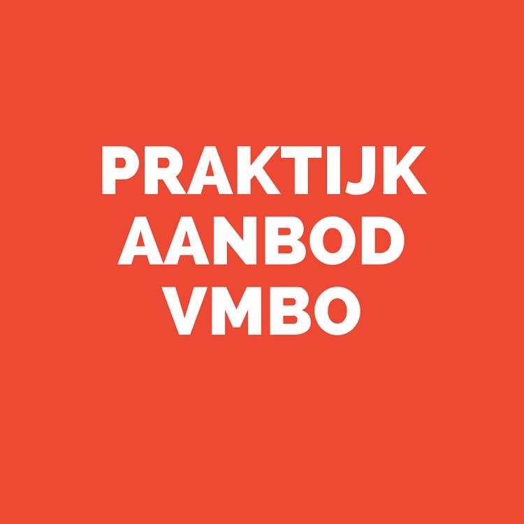 Praktijk aanbod VMBO